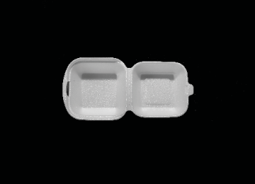 Foam Hamburger Box Small
