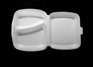 Foam Meal Container 2 Compartments