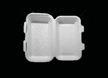 Foam Sandwich Box Large